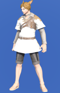 Model-Aetherial Ranger's Tunic-Male-Miqote.png