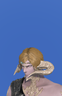 Model-Common Makai Priest's Coronet-Male-AuRa.png