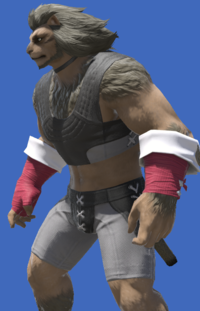 Model-Evoker's Ringbands-Male-Hrothgar.png