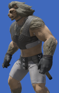 Model-Leonhart Gloves-Male-Hrothgar.png