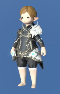 Model-Prototype Alexandrian Jacket of Maiming-Female-Lalafell.png
