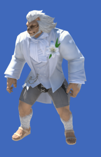Model-Tailcoat of Eternal Passion-Male-Hrothgar.png