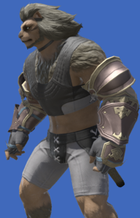 Model-Alliance Armguards of Aiming-Male-Hrothgar.png
