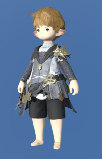 Model-Brand-new Tabard-Male-Lalafell.png