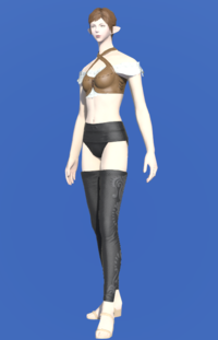 Model-Gryphonskin Breastguard-Female-Elezen.png