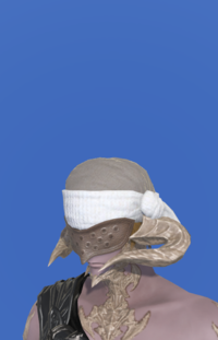 Model-Woolen Turban-Male-AuRa.png