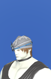 Model-Carbonweave Cap of Crafting-Male-Roe.png