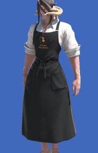Model-Craftsman's Apron-Male-AuRa.png