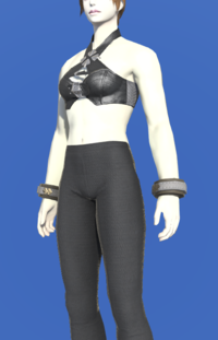 Model-Trailblazer's Wristguards-Female-Roe.png