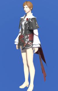 Model-Coat of the Lost Thief-Female-Hyur.png