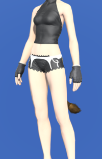 Model-Rainbow Halfgloves of Scouting-Female-Miqote.png