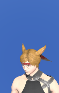 Model-Amatsu Hachigane-Male-Miqote.png