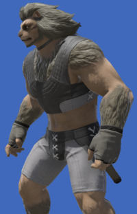 Model-Flame Sergeant's Halfgloves-Male-Hrothgar.png