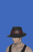 Model-Holy Rainbow Hat-Male-Hyur.png