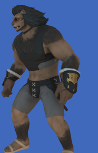 Model-Replica Sky Pirate's Gloves of Casting-Male-Hrothgar.png