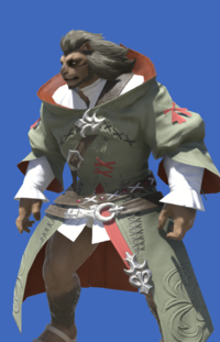 Model-Acolyte's Robe-Male-Hrothgar.png