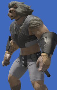 Model-Aetherial Iron Vambraces-Male-Hrothgar.png