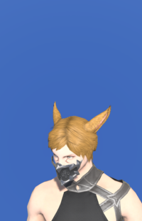 Model-Picaroon's Mask of Scouting-Male-Miqote.png