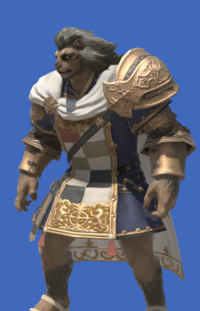 Model-Ivalician Squire's Tunic-Male-Hrothgar.png