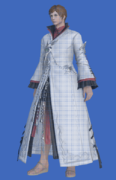 Model-Far Eastern Noble's Robe-Male-Hyur.png