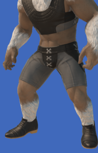 Model-Valentione Acacia Shoes-Male-Hrothgar.png