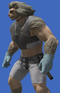 Model-Wolf Dress Gloves-Male-Hrothgar.png