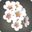 White Cherry Blossom Corsage Icon.png