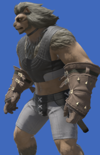 Model-Archaeoskin Gloves of Gathering-Male-Hrothgar.png