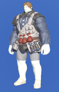 Model-Royal Volunteer's Gambison of Healing-Male-Roe.png