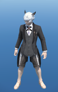 Model-Butler's Jacket-Male-Miqote.png