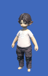 Model-Obsolete Android's Trousers of Scouting-Male-Lalafell.png