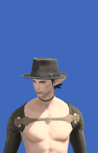 Model-Aesthete's Hat of Gathering-Male-Elezen.png