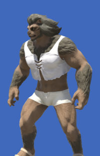 Model-Southern Seas Vest-Male-Hrothgar.png