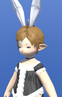 Model-Bunny Crown-Female-Lalafell.png