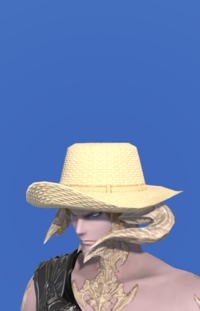 Model-Straw Hat-Male-AuRa.png