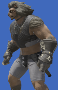 Model-Bogatyr's Gloves of Healing-Male-Hrothgar.png