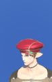 Model-Choir Hat-Male-Elezen.png