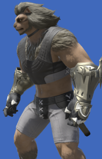 Model-Alexandrian Gauntlets of Fending-Male-Hrothgar.png