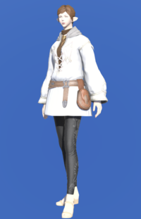 Model-Imperial Operative Dalmatica-Female-Elezen.png