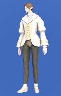 Model-Plundered Bliaud-Male-Elezen.png