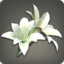 White Brightlily Corsage Icon.png