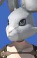 Model-Rabbit Head-Male-Elezen.png