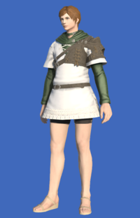 Model-Toxotes Tunic-Male-Hyur.png