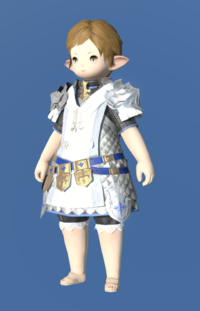 Model-Augmented Gallant Surcoat-Female-Lalafell.png