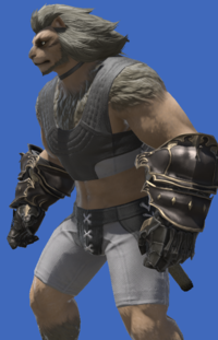 Model-Augmented Rathalos Vambraces (M)-Male-Hrothgar.png