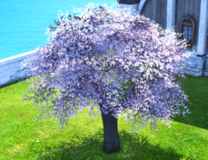 Model-Authentic Eastern Cherry Tree.png