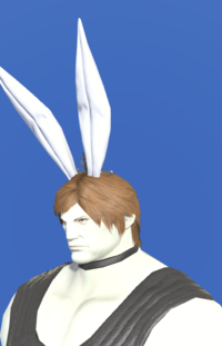 Model-Bunny Crown-Male-Roe.png