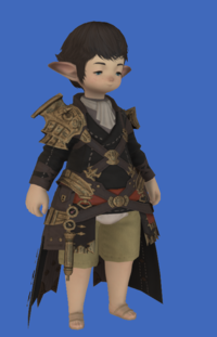 Model-Replica Sky Pirate's Coat of Fending-Male-Lalafell.png