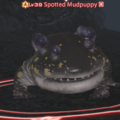 Spotted Mudpuppy.png