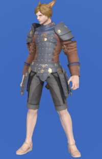 Model-Aetherial Raptorskin Jacket-Male-Miqote.png